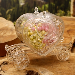 Carrosse en pastique transparent